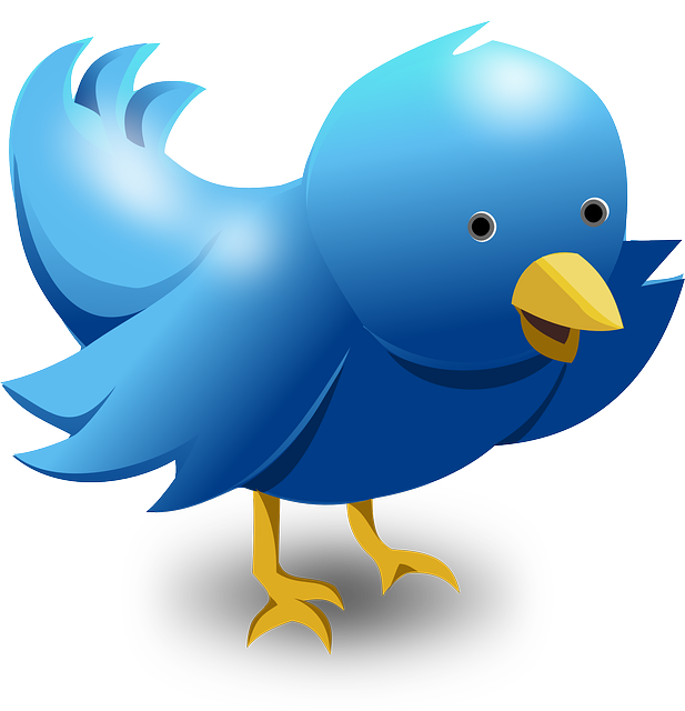 grow followers on twitter