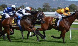 Melbourne Cup – Race That Stops The Nation