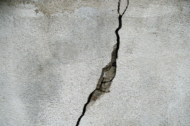 Why You Need a Building & Pest Inspection Before Embarking on a Wall Crack Repair