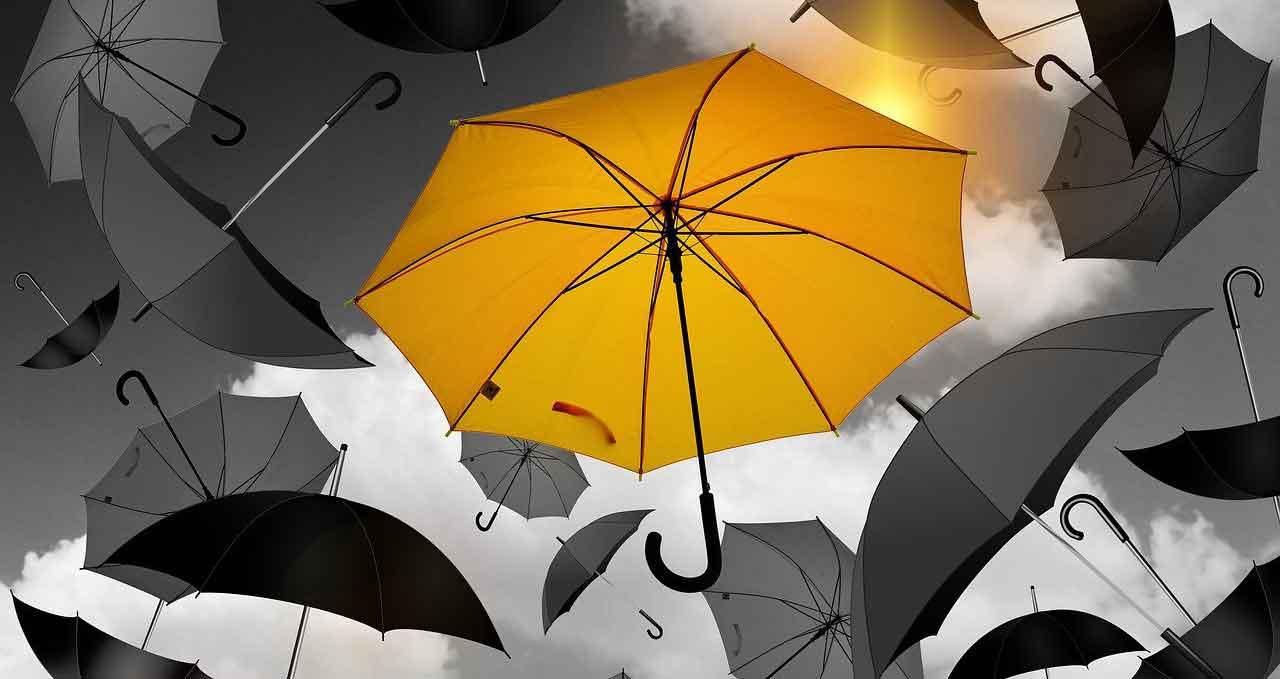 A Guide to Find Promotional Umbrellas for an Outdoor Event